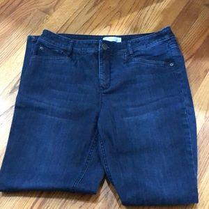 J. Jill Jeans - J.jill smooth fit slim ankle jeans
